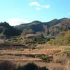 梅田椎茸園の風景